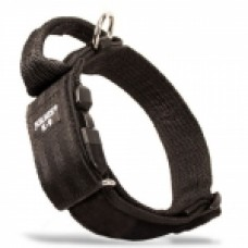 Julius K9 Collar With Secured Handle