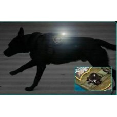 Guardian Light for K9 Operations