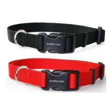 Nylon Collar with Quick release